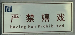 warning-from-the-fun-police